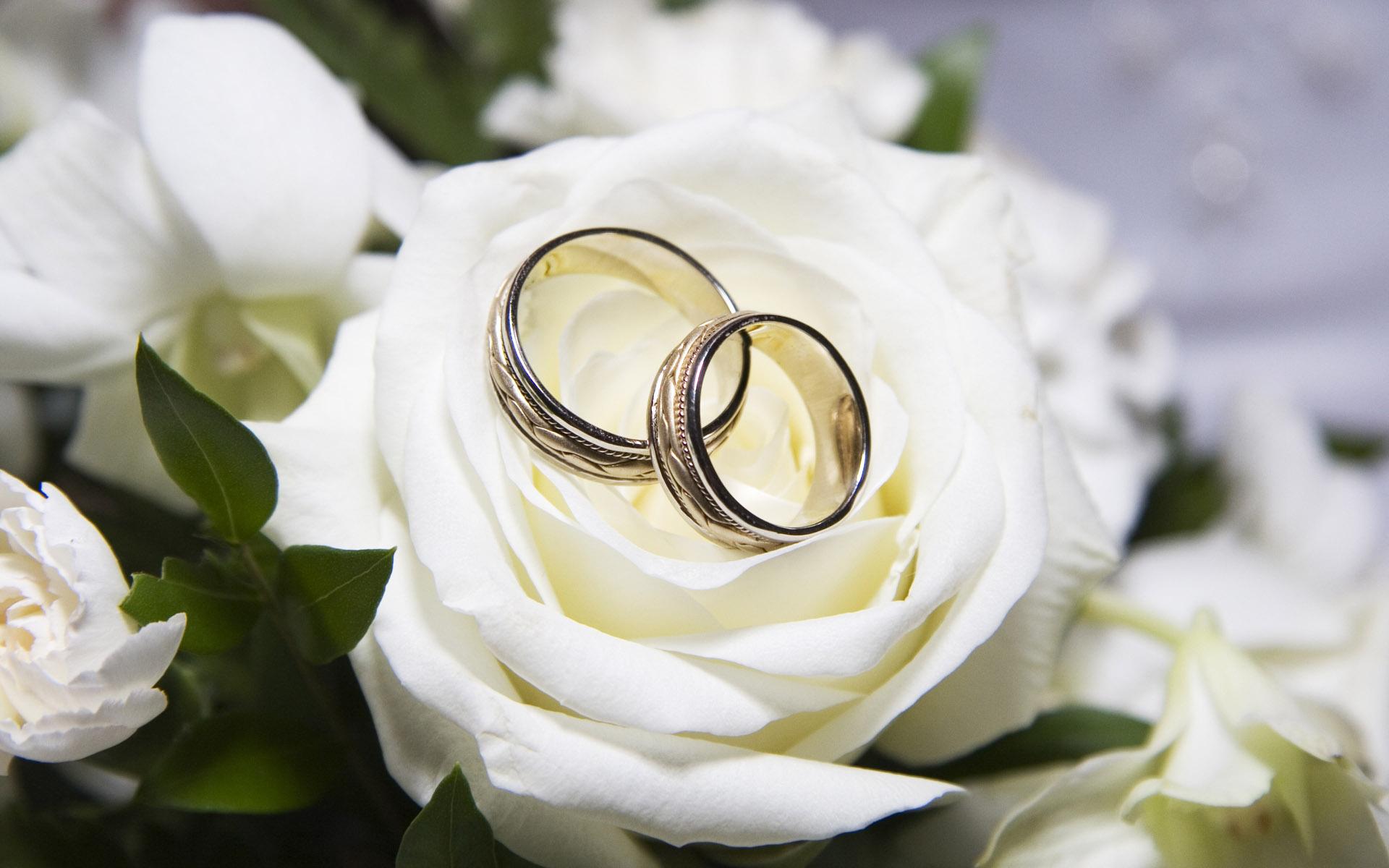 geriausias-vestuviu-fotografas